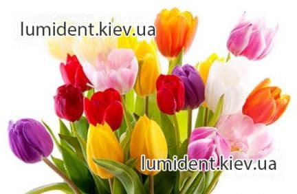 Dental clinic Lumi-Dent in Kiev